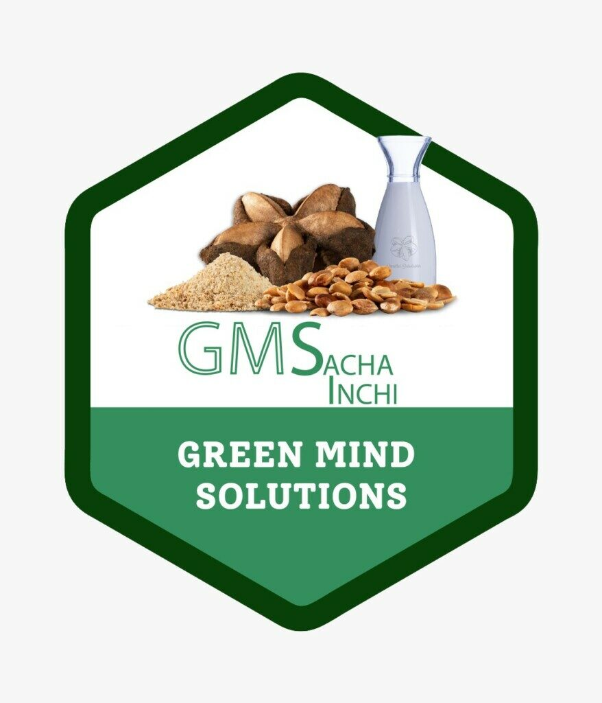 GMS Green Mind Solutions S.A.S